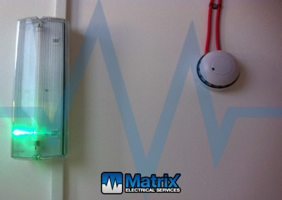 Detector & Light